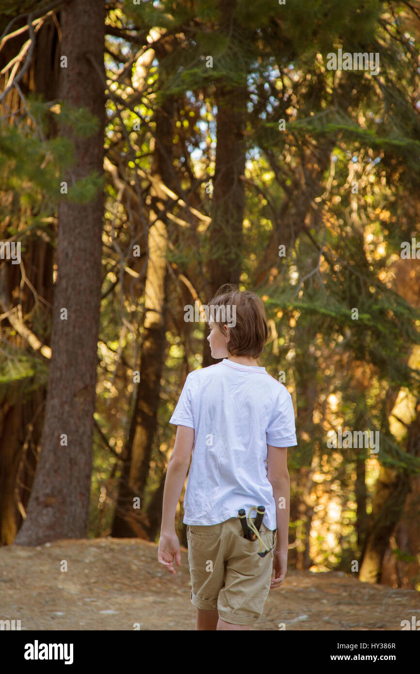 USA, California, Yosemite, Boy (14-15) walking through forest with catapult toy in pocket Stock Photo