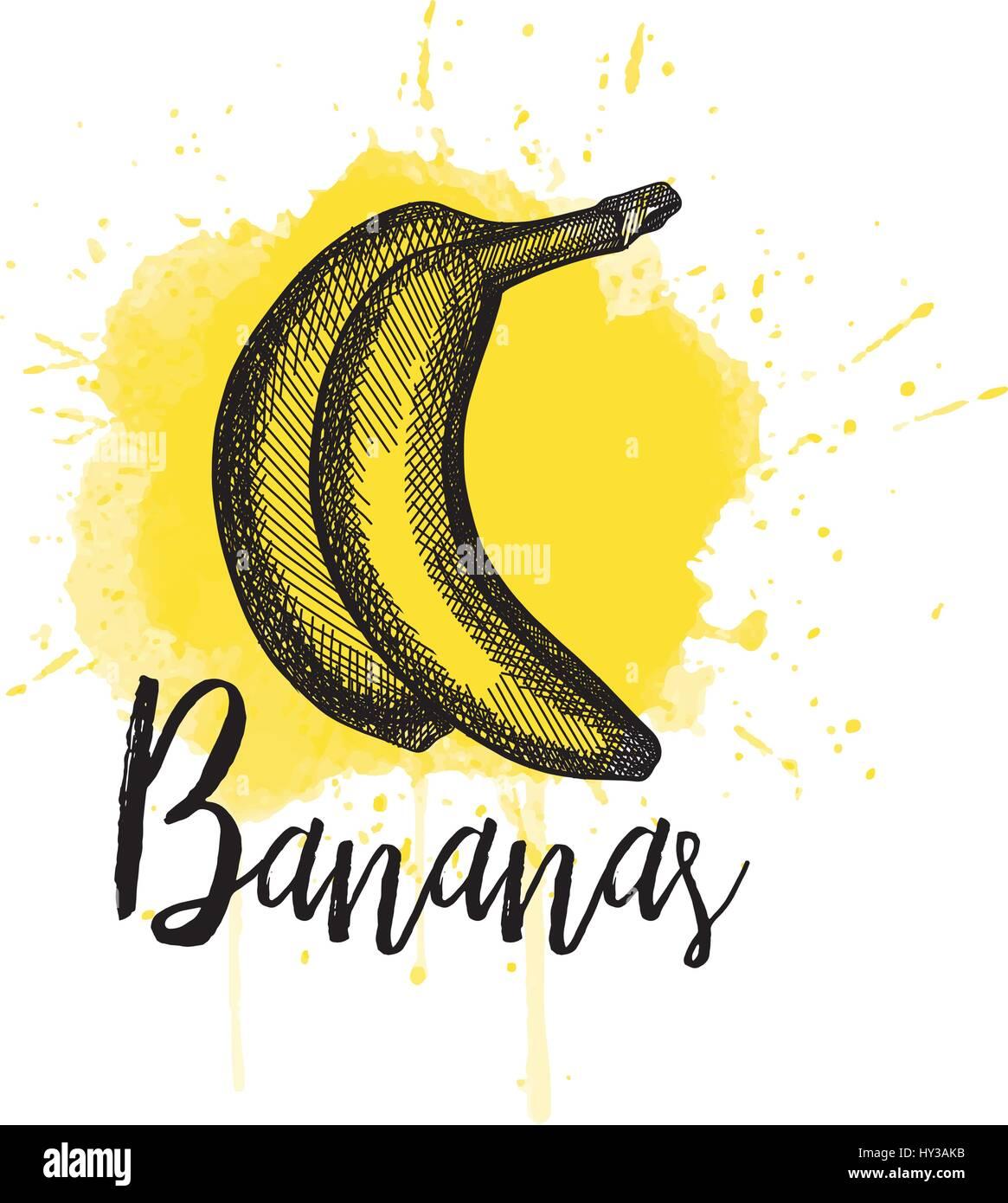 Vector illustration of a banana. Hand drawn Stock Vector