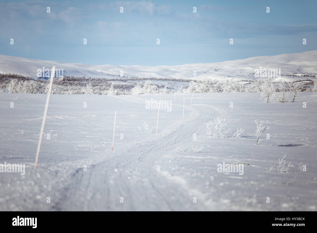 A beautiful white landscape of a snowy Norwegian winter day with tracks for snowmobile or dog sled - Stock Image