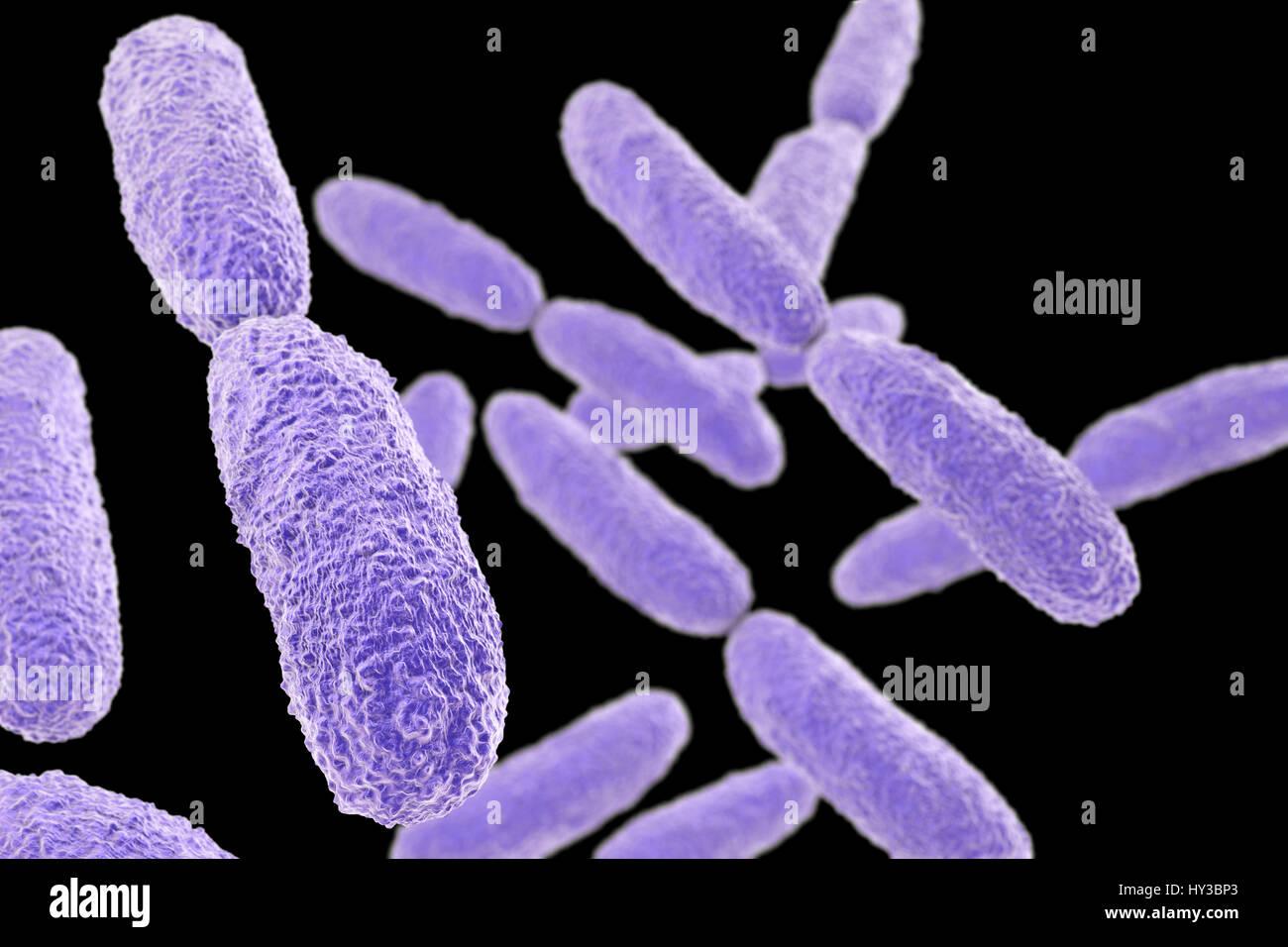 What is pneumonia 19