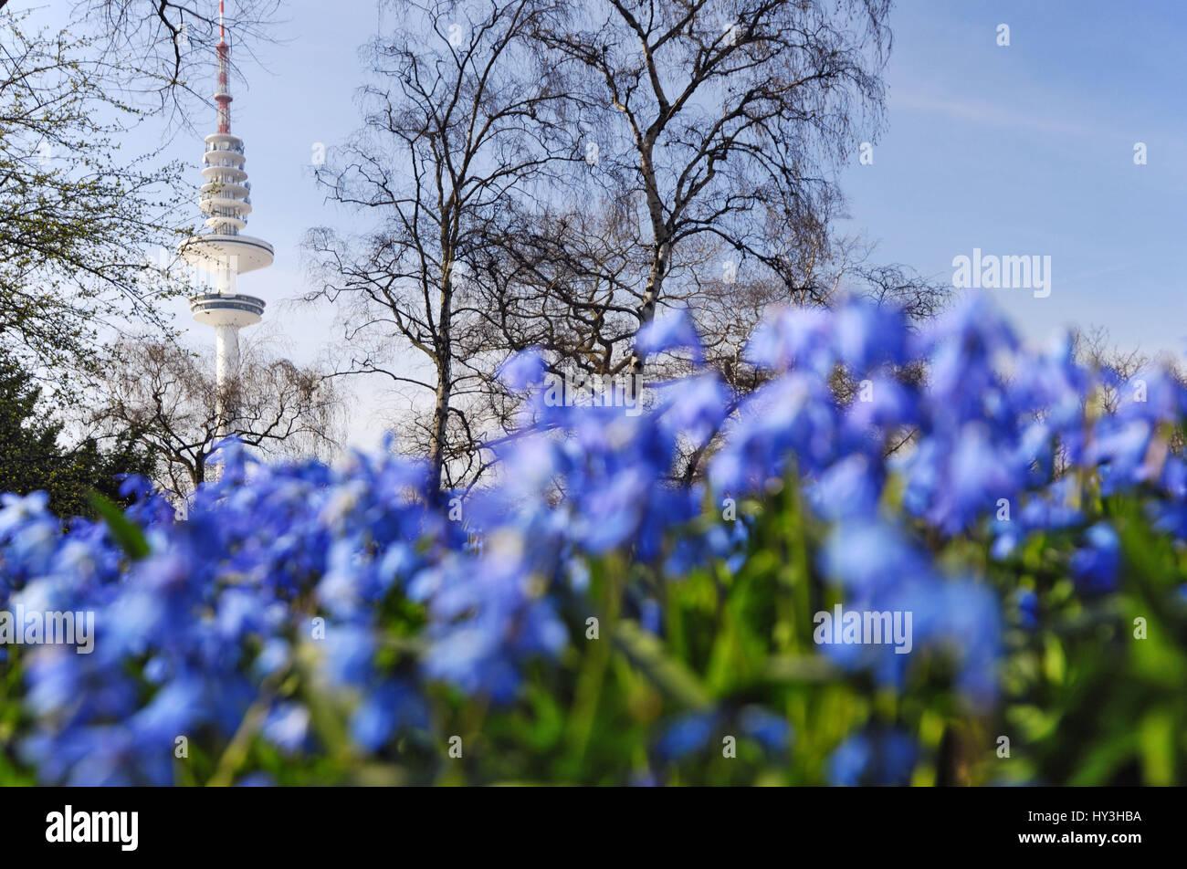 Frühlingsblumen Stock Photos & Frühlingsblumen Stock Images - Alamy