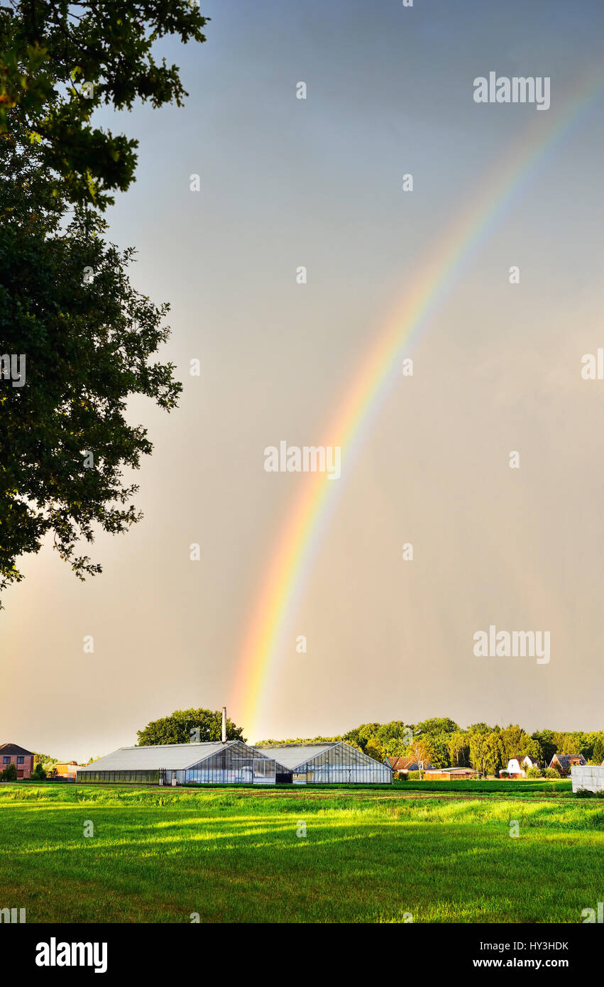 Rainbows in Kirchwerder, Hamburg, Germany, Europe, Regenbogen in Kirchwerder, Deutschland, Europa - Stock Image