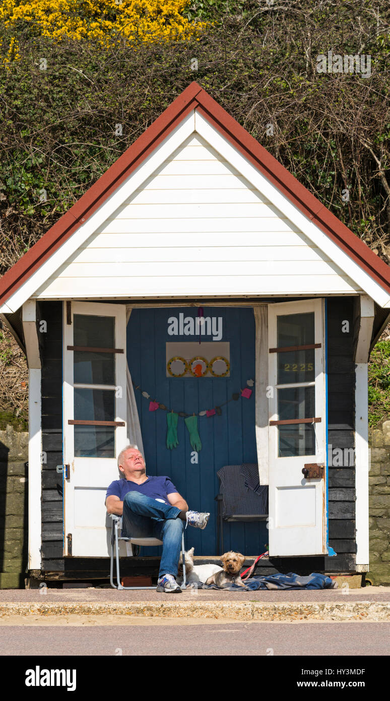 Bournemouth - man enjoying a snooze at beach hut with dogs in the sunshine at Bournemouth beach seaside in March - Stock Image