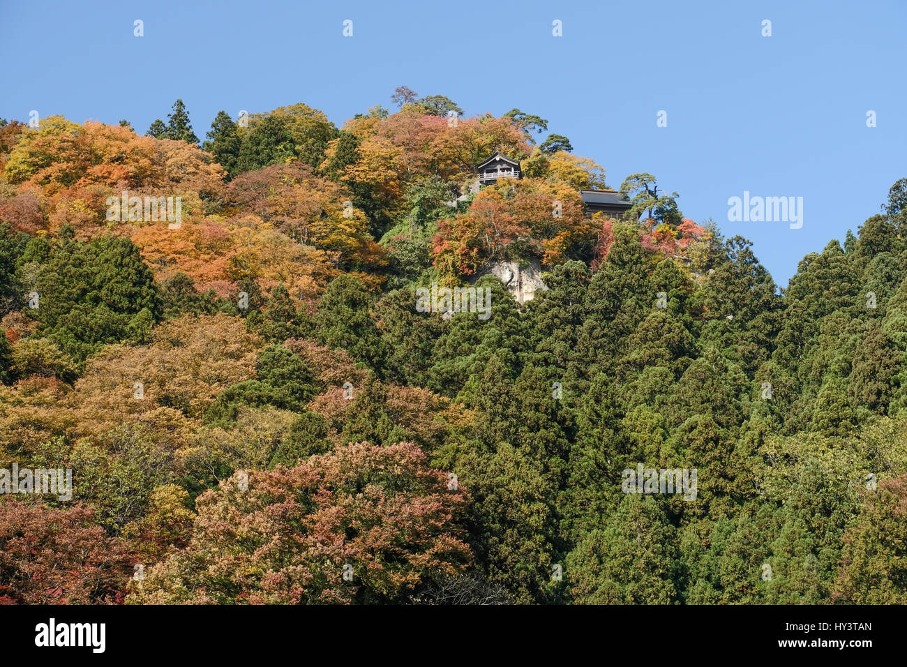 Yamadera Temple at top of mountain with autumn colour trees in Yamagata, Japan - Stock Image