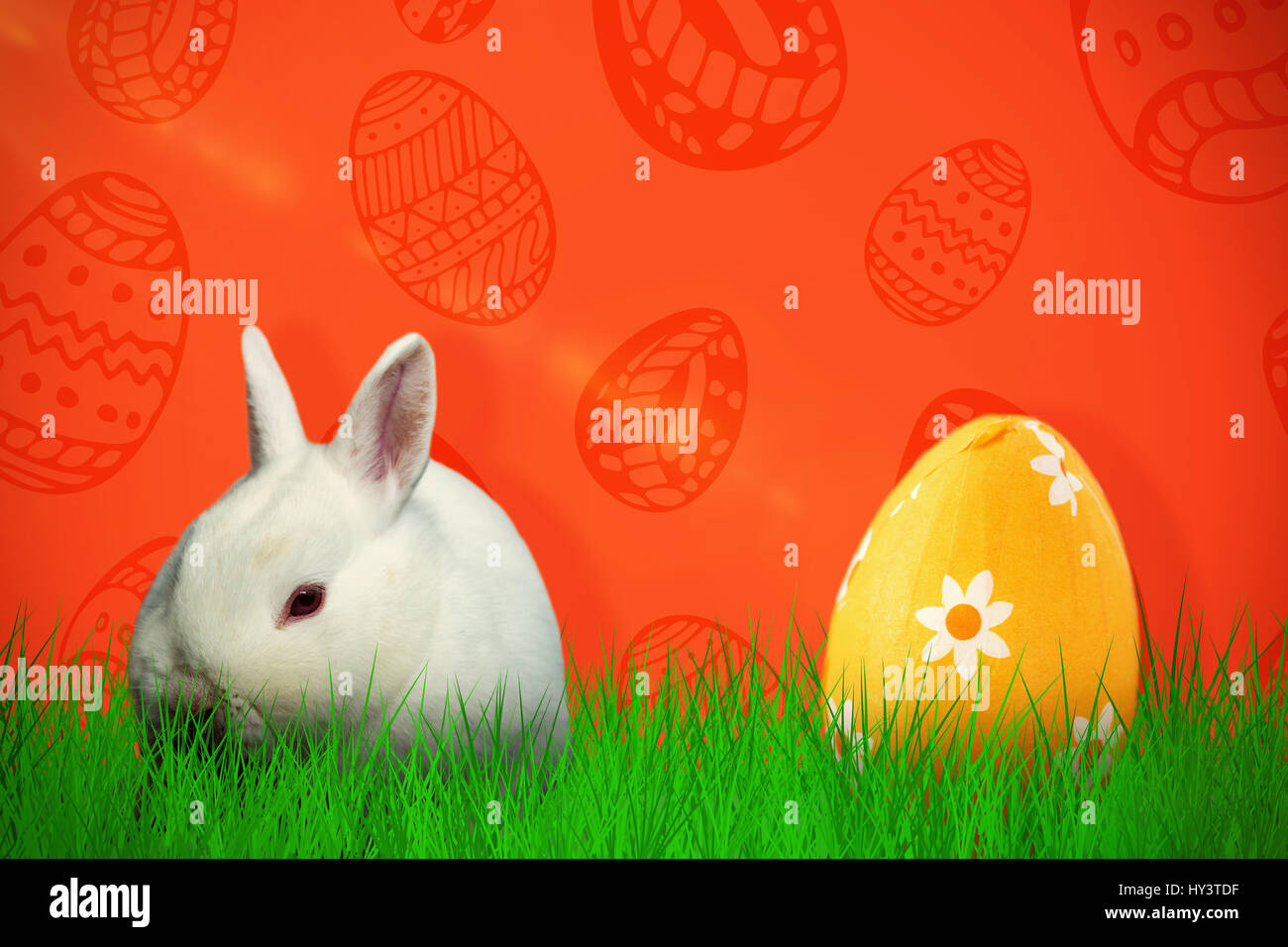 Rabbit against white background against red background - Stock Image