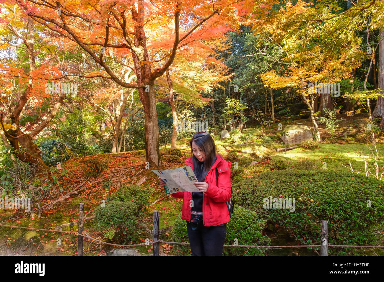 Woman tourist in red jacket and with camera stands and looks at map in garden with autumn colour trees in Shisen - Stock Image