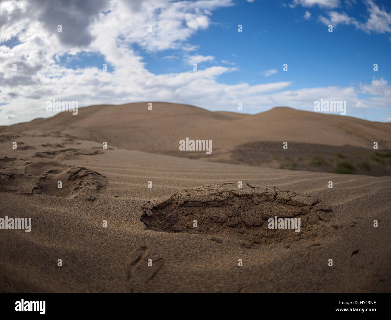 Scenic View Of Desert Against Blue Sky - Stock Image