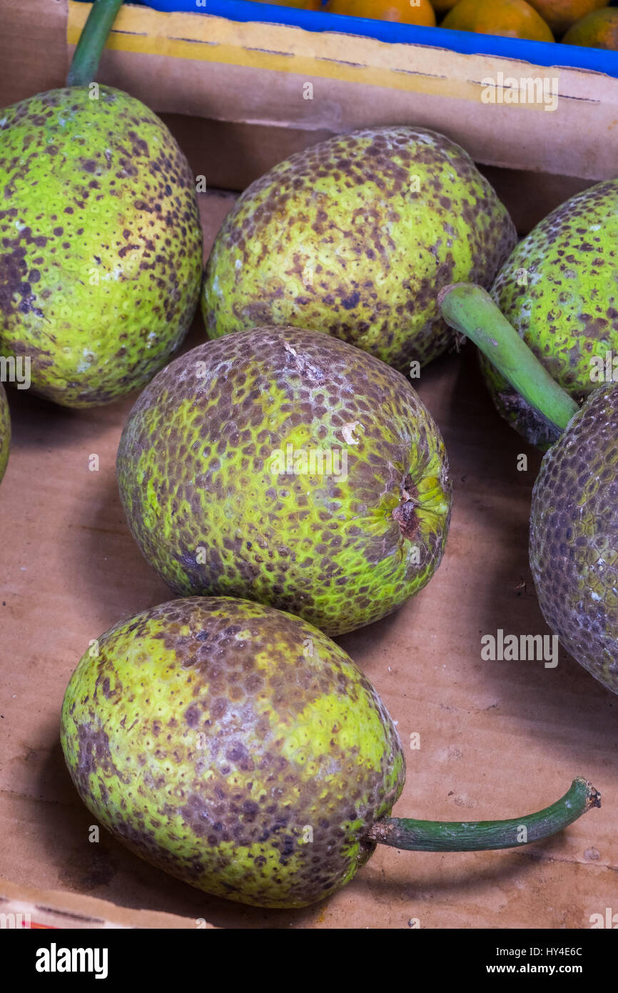 Tropical green fruit at a Hawaii farmers market on the North Shore of Oahu. Stock Photo