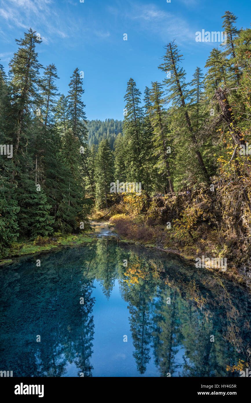 Tamolitch Blue Pool on the McKenzie River, Willamette National Forest, Oregon. - Stock Image
