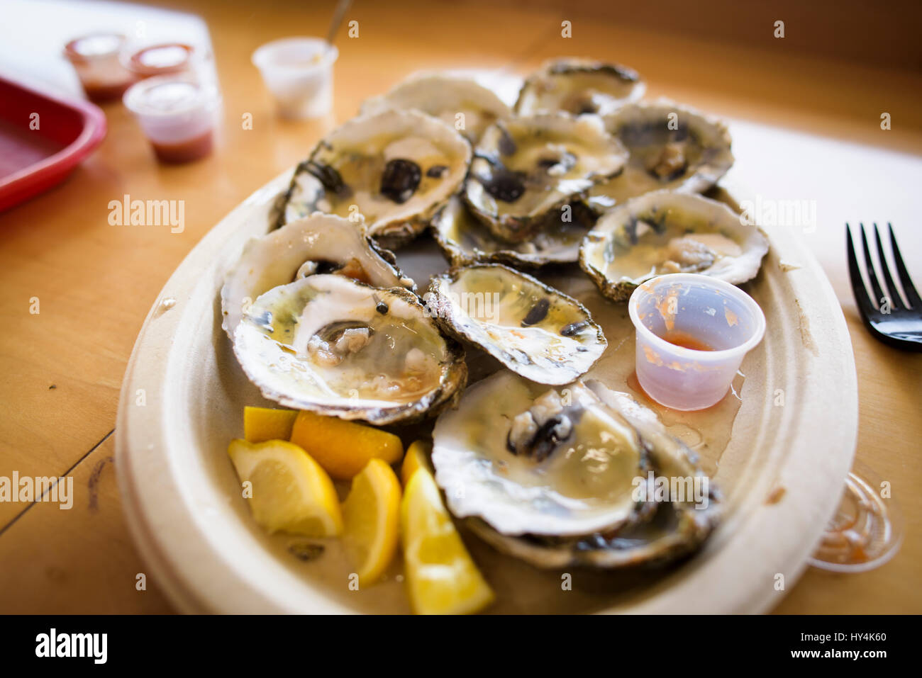 Plate of Oysters on the half shell. - Stock Image