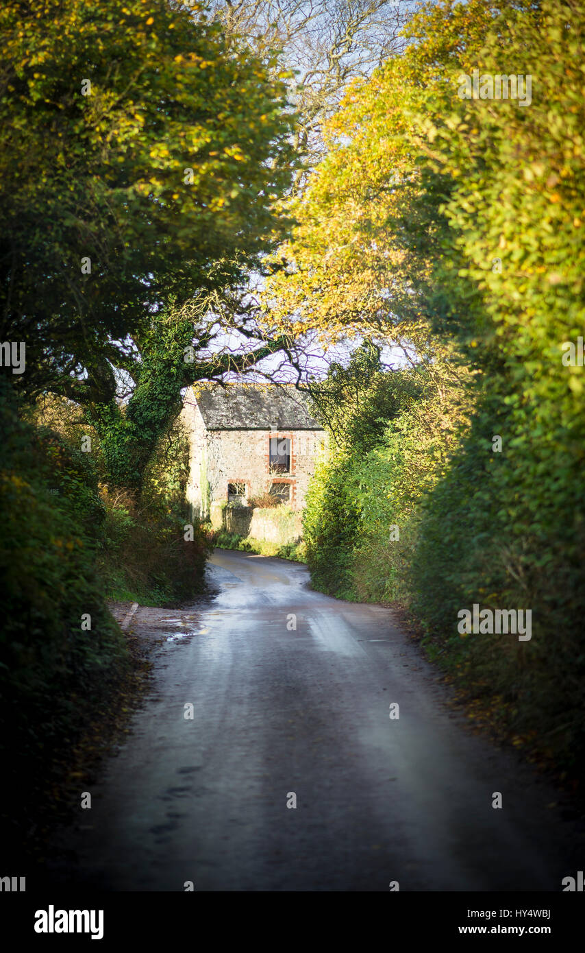 Driving down a country lane to Bantham beach in Devon, England - Stock Image