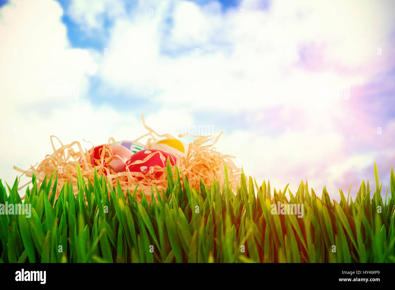 Grass growing outdoors against blue sky with white clouds Stock Photo