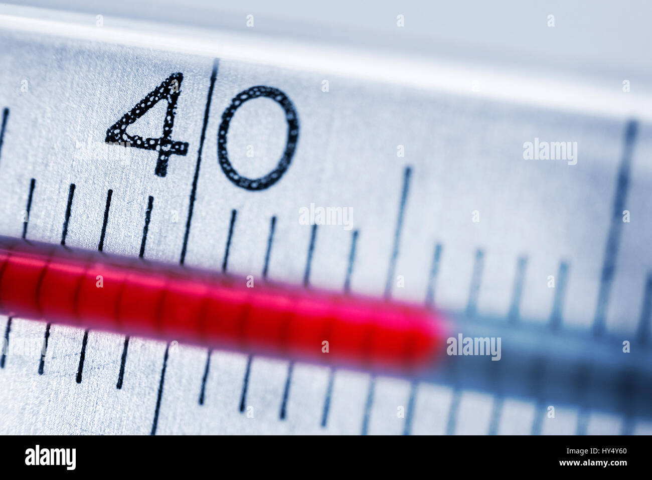 Clinical thermometer at more than 40 degrees, fever, Fieberthermometer bei ueber 40 Grad, Fieber Stock Photo