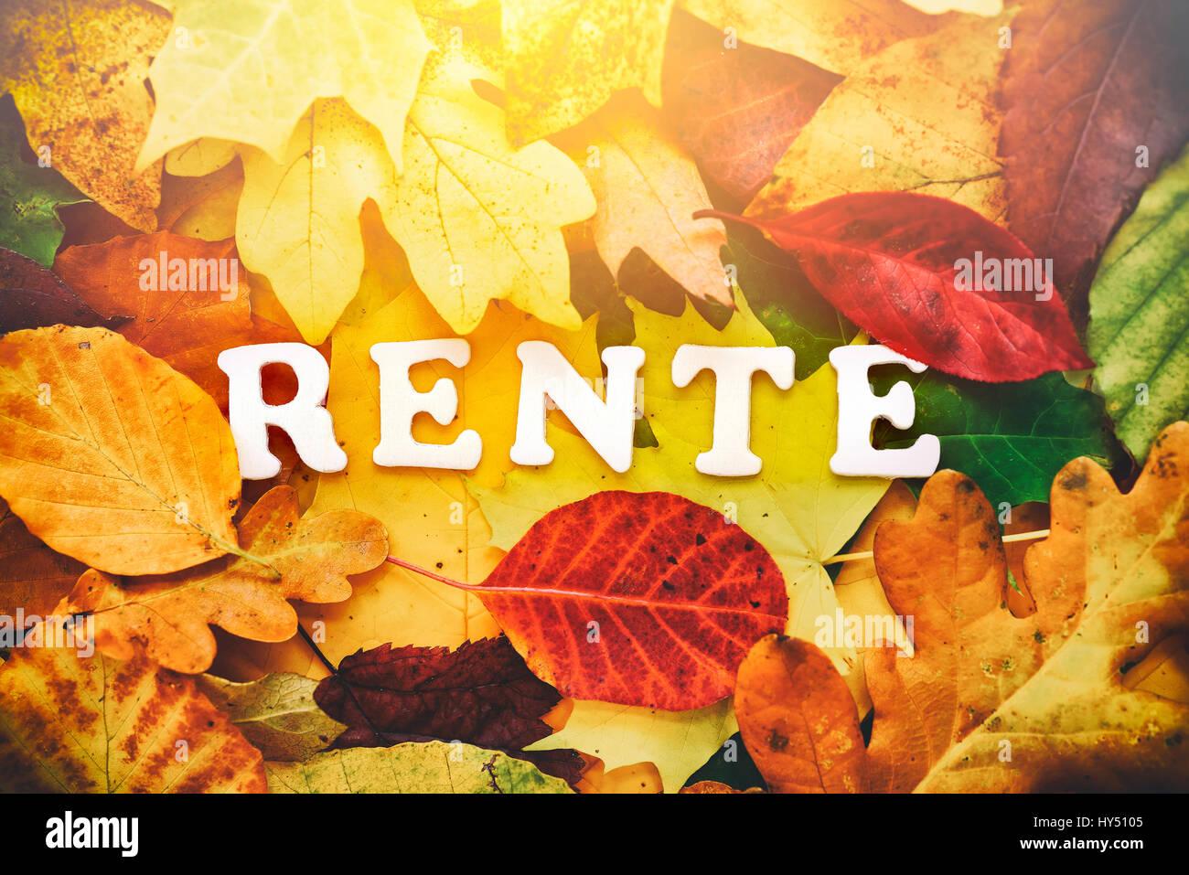 Stroke pension on autumn sheets, Schriftzug Rente auf Herbstblaettern Stock Photo