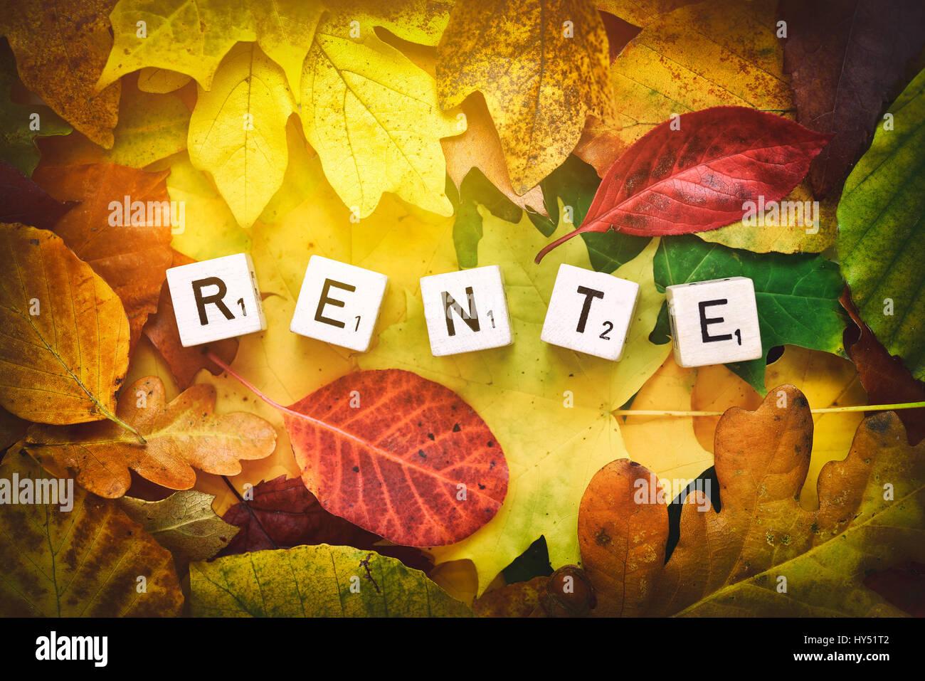 Letter cubes form the stroke pension on autumn foliage, Buchstabenwuerfel bilden den Schriftzug Rente auf Herbstlaub Stock Photo