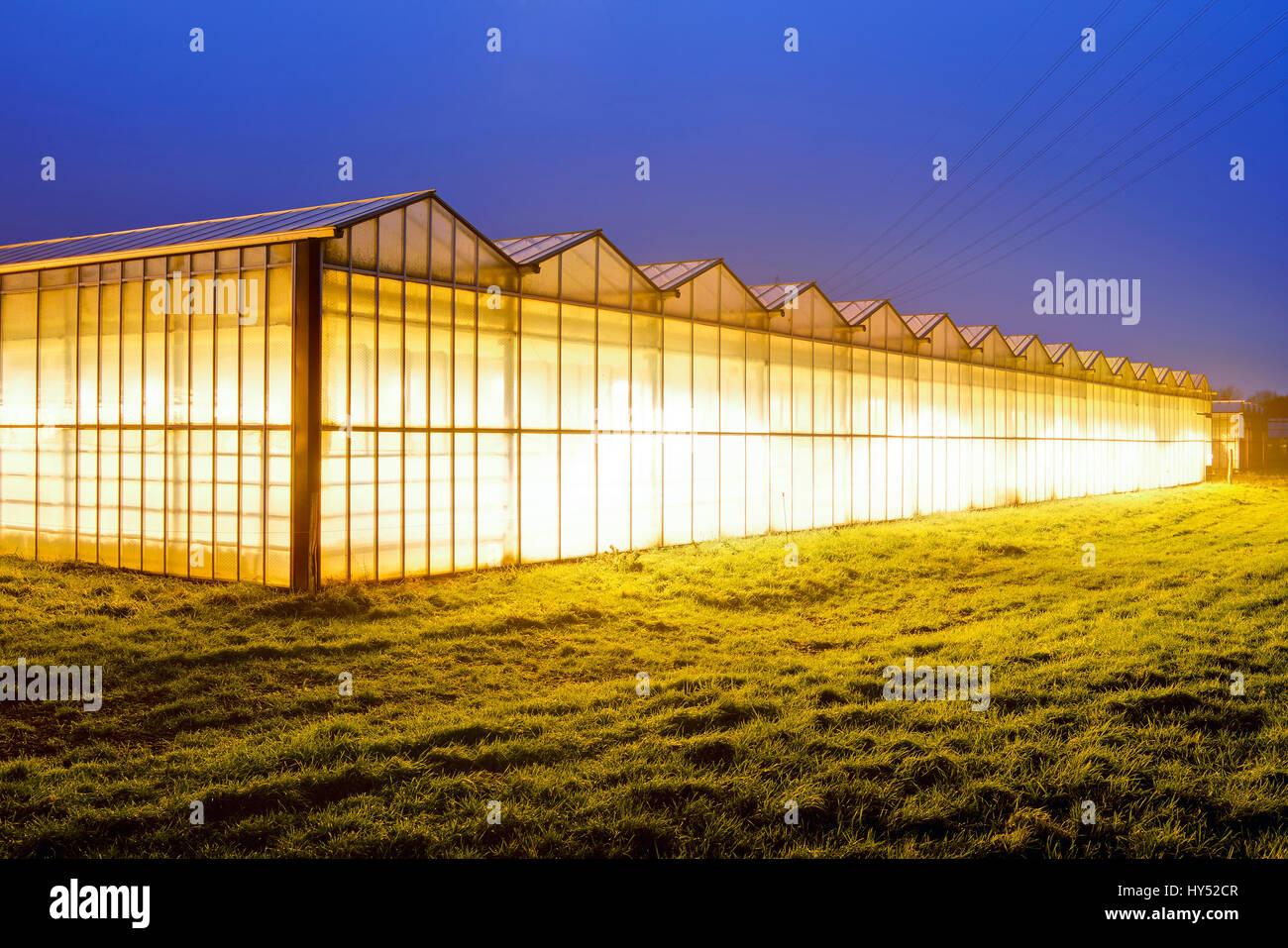 Illuminated greenhouses in the 4 and march landing, Hamburg, Germany, Europe, Beleuchtete Gewaechshaeuser in den - Stock Image