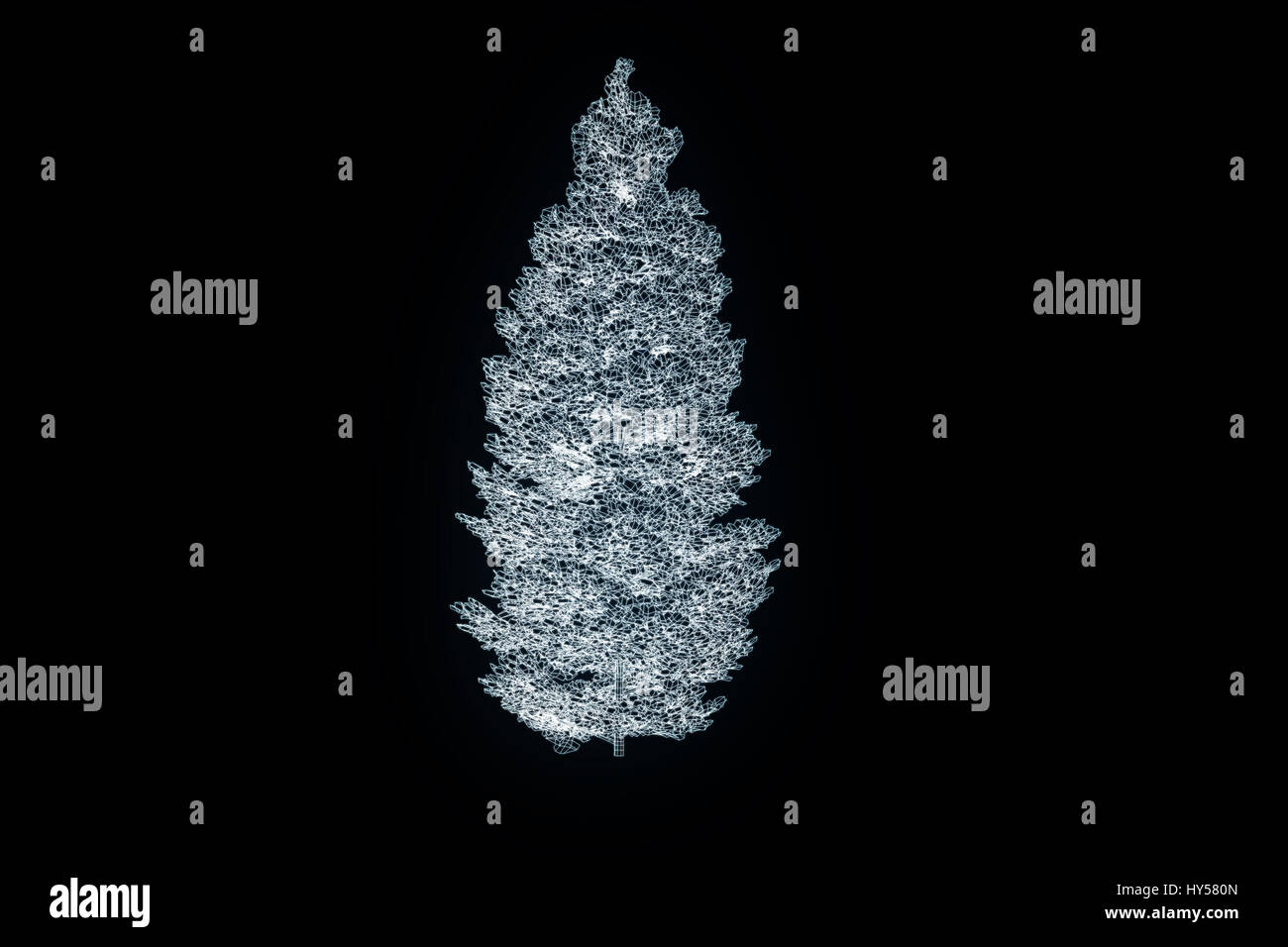 Tree Plant In Wireframe Hologram Stock Photos & Tree Plant In ...