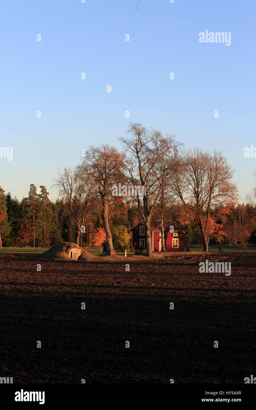 Sweden, Narke, Kvistbro, Half moon over plowed field - Stock Image