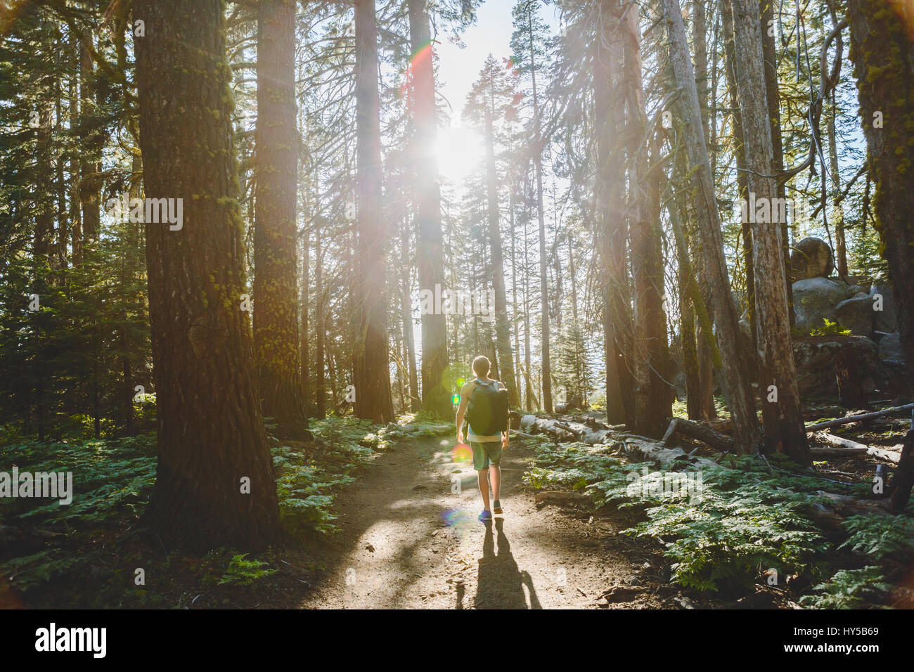 USA, California, Yosemite National Park, Man hiking at Taft Point Trail - Stock Image