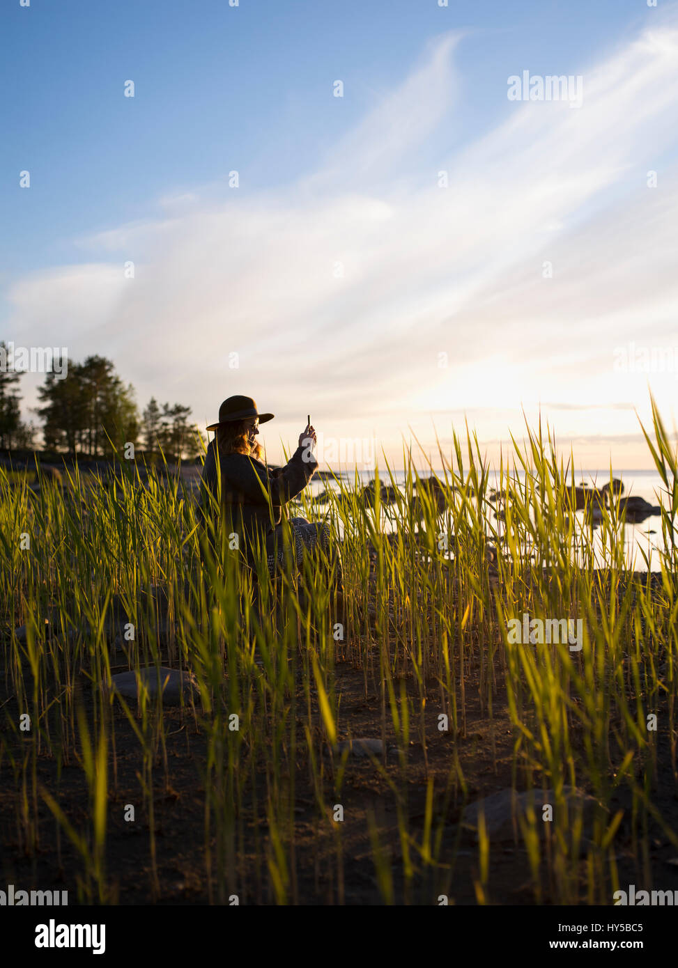 Finland, Ostrobothnia, Jakobstad, Faboda, Woman sitting among reeds by sea and photographing Stock Photo