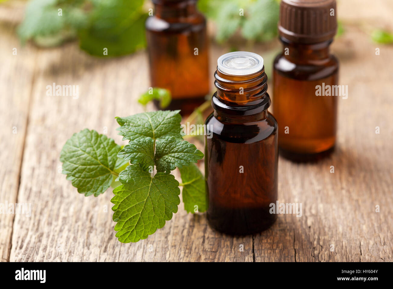 Mint essential oil in a glass bottle, sprigs of fresh mint on an old wooden background - Stock Image