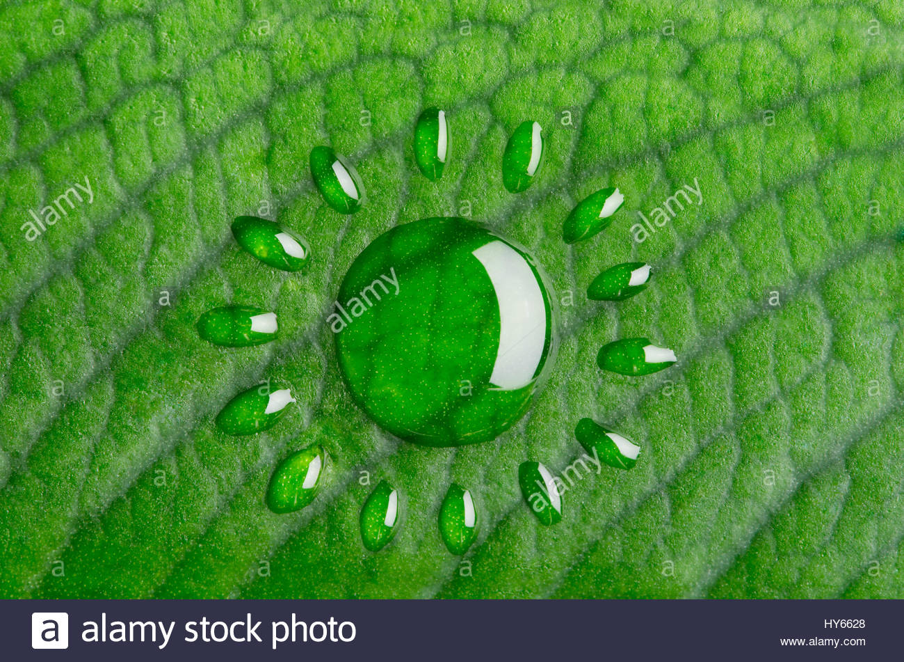 Green energy concept. Sun made of water droplets - Stock Image