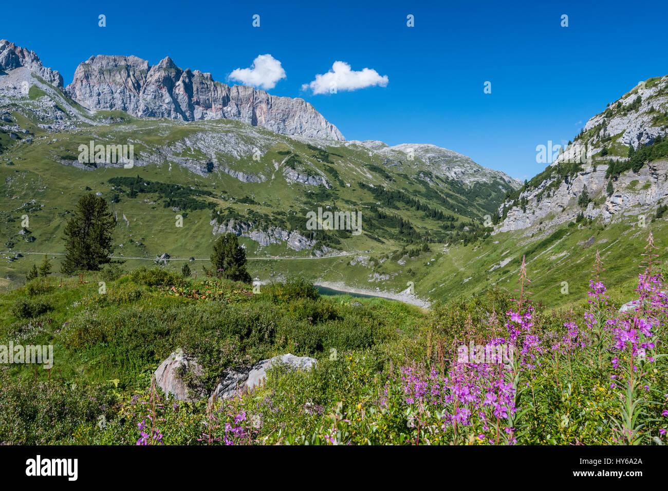 Karst landscape, Steinernes Meer and Rote Wand, Lechquellen Mountains, Vorarlberg, Austria Stock Photo