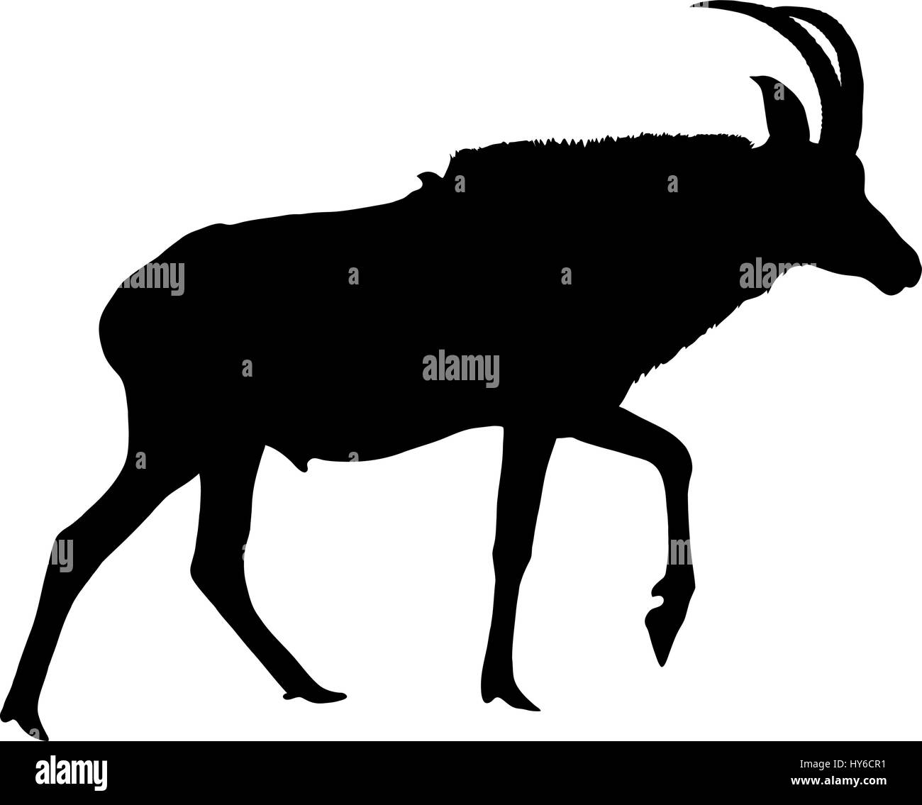 Silhouette Of A Walking Horse Antelope Stock Vector Image Art Alamy