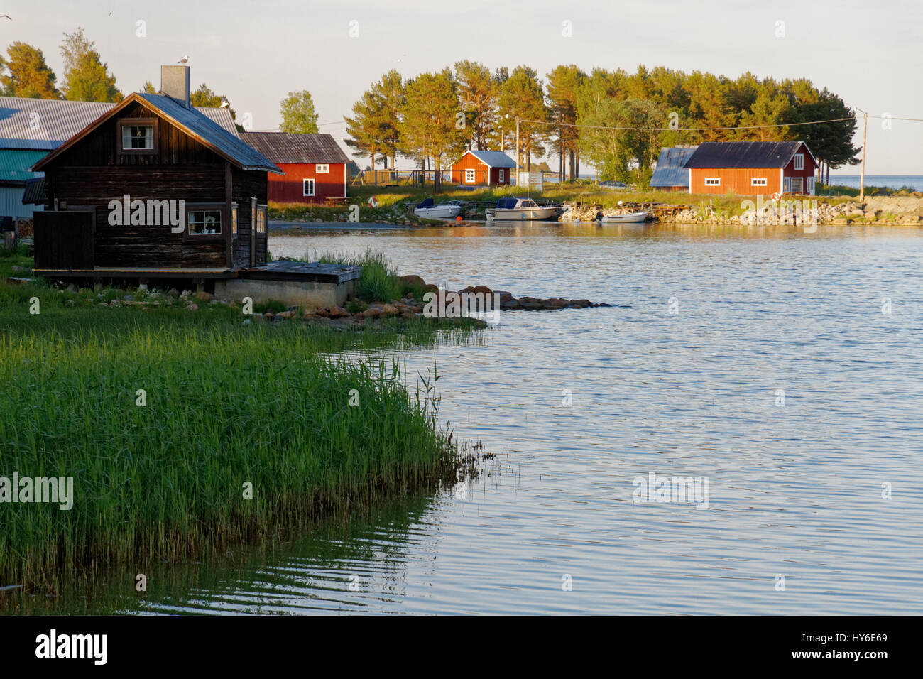 Beach with houses on the Swedish East Coast - Stock Image
