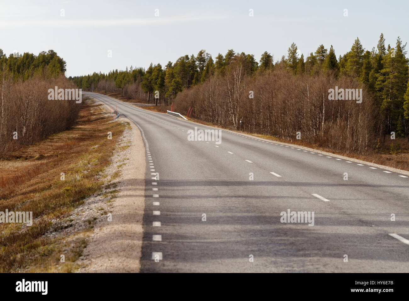Road across early summer Lappland, Northern Sweden - Stock Image