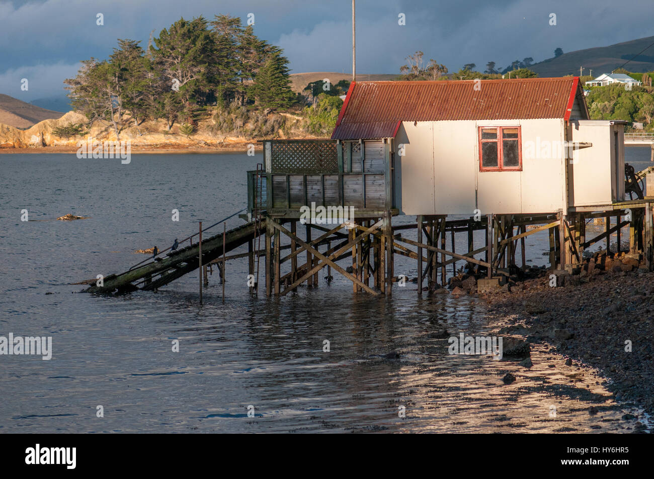 Boat houses at Otago Peninsula and Otago Harbour during sunset east of Dunedin, New Zealand - Stock Image