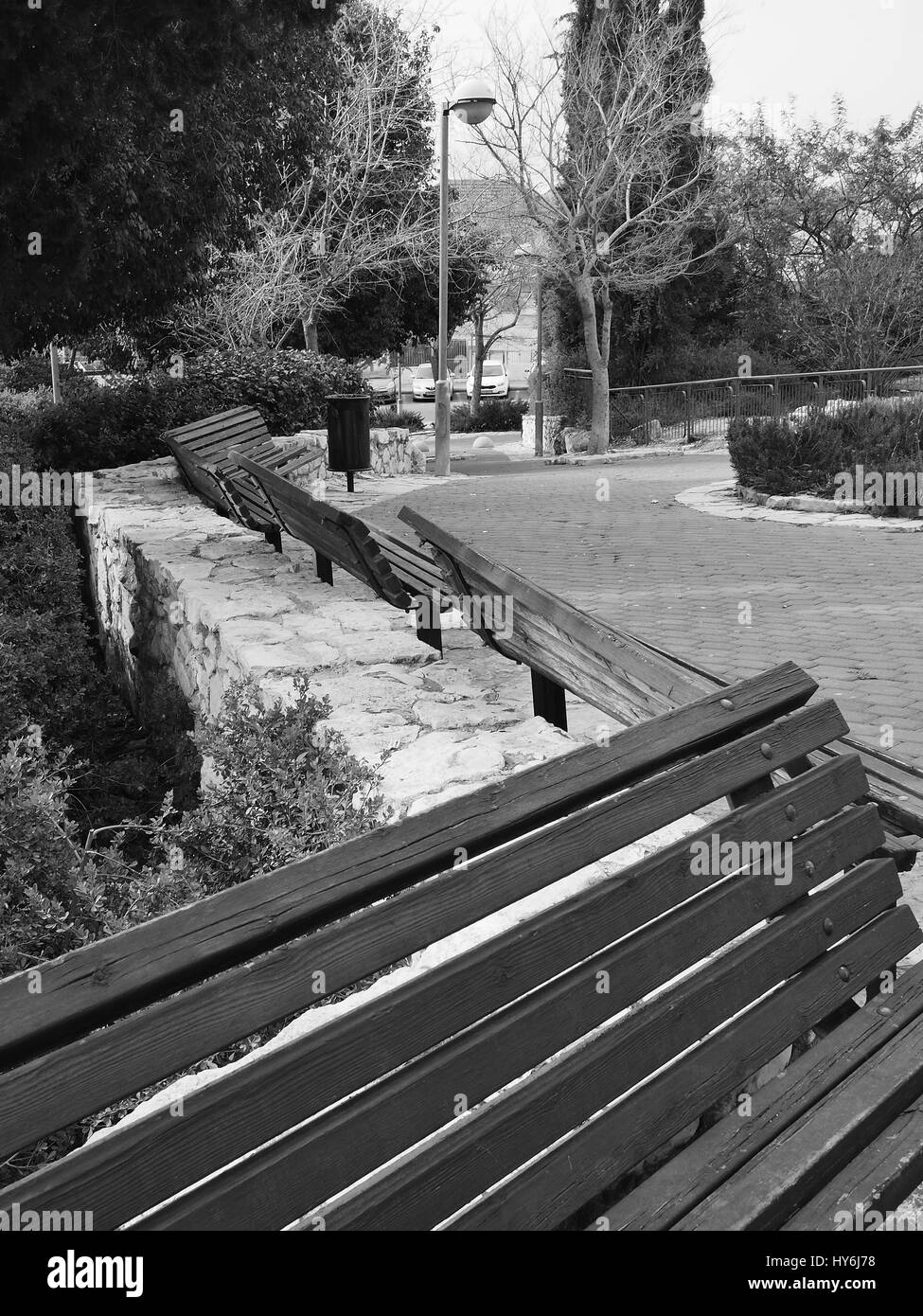Benches in the park - Black And White - Stock Image
