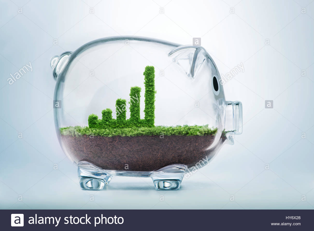 Business growth concept with grass growing in shape of graphic bar inside transparent piggy bank - Stock Image