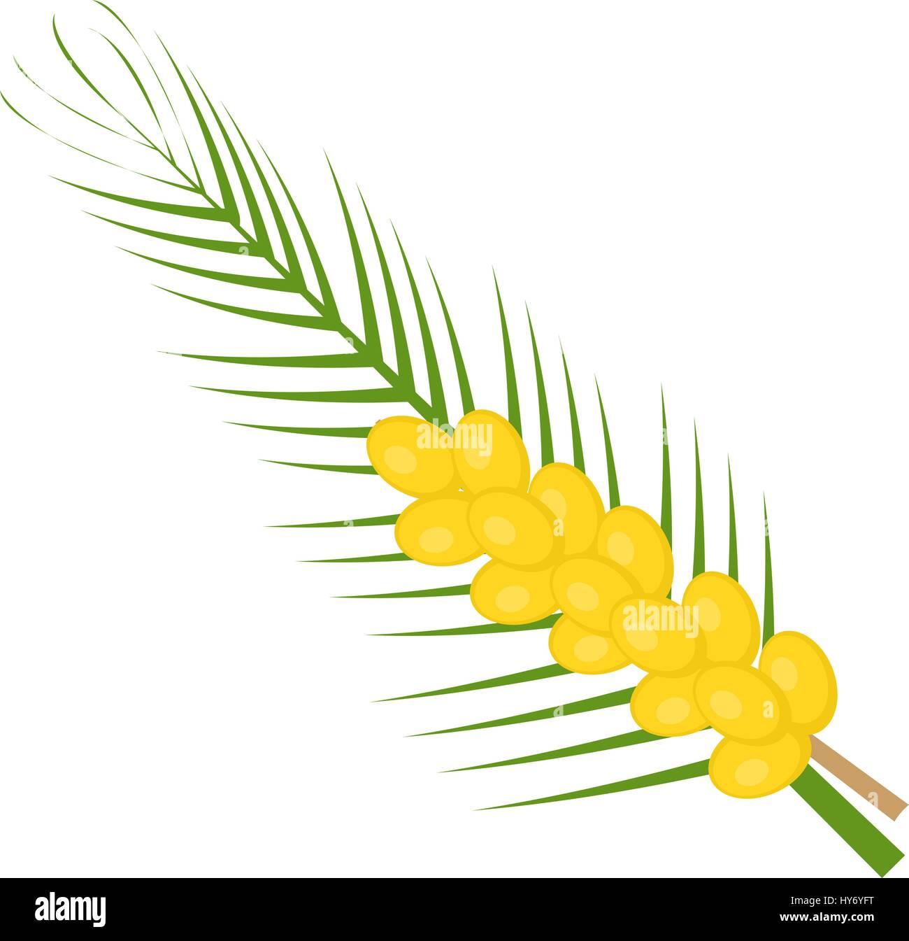 Fresh dates icon flat, cartoon style. Yellow fruit isolated on white background. Vector illustration, clip-art. - Stock Vector