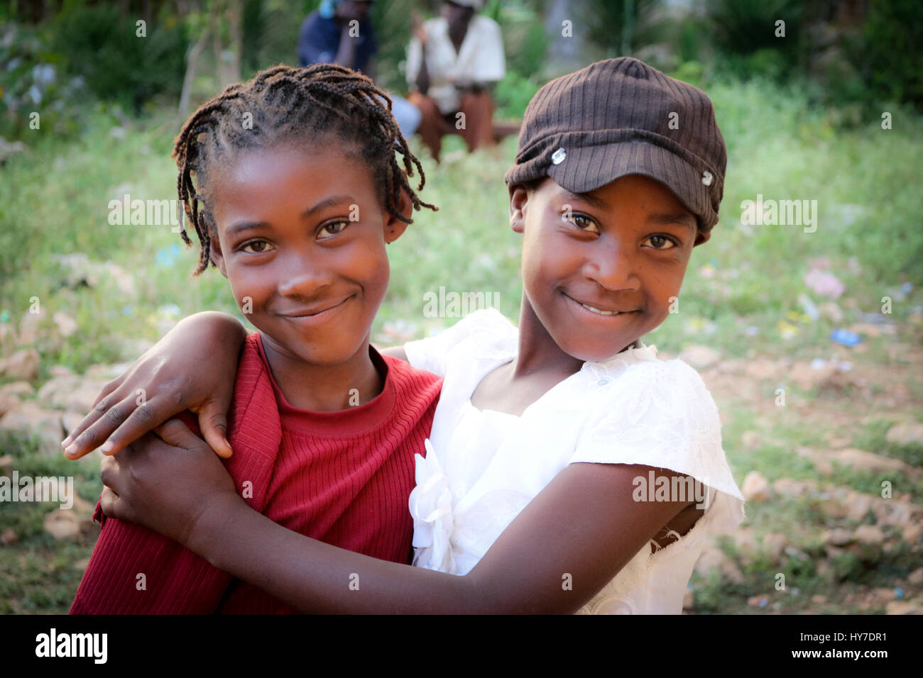 haitian chicks