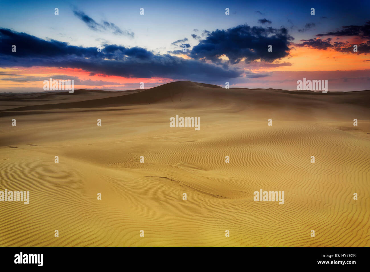 Golden sand dunes at sunrise with ranges of sand hills towards hoziron with red sky near Stockon beach , NSW, AUstralia. - Stock Image