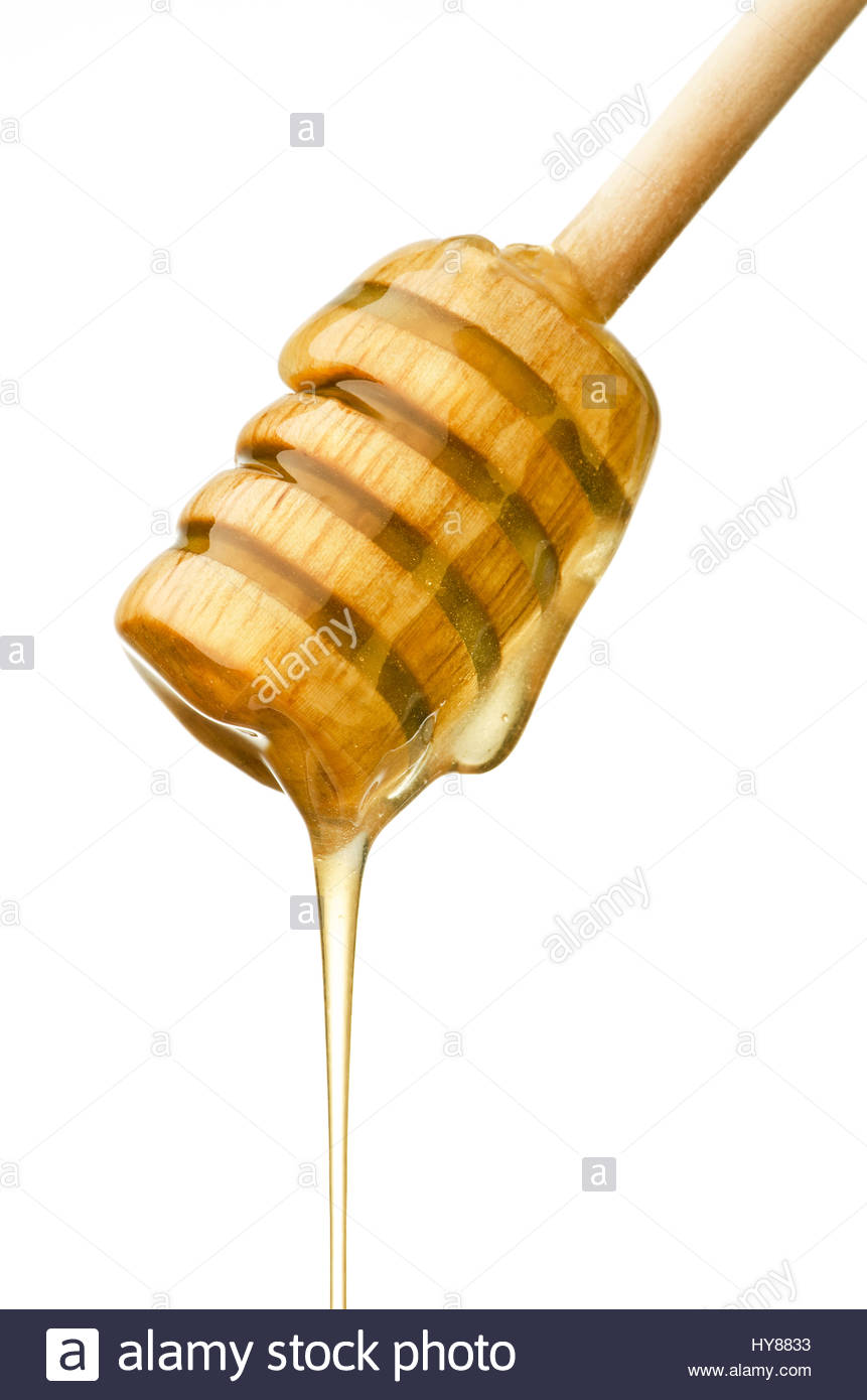Honey running from a honey dipper isolated on white background - Stock Image