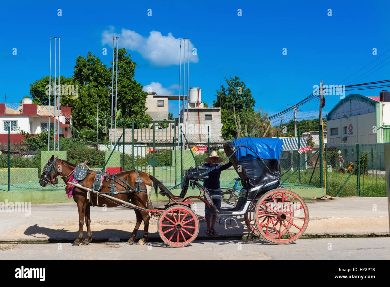 Horse carriage for Tourists in Varadero Cuba - Stock Image