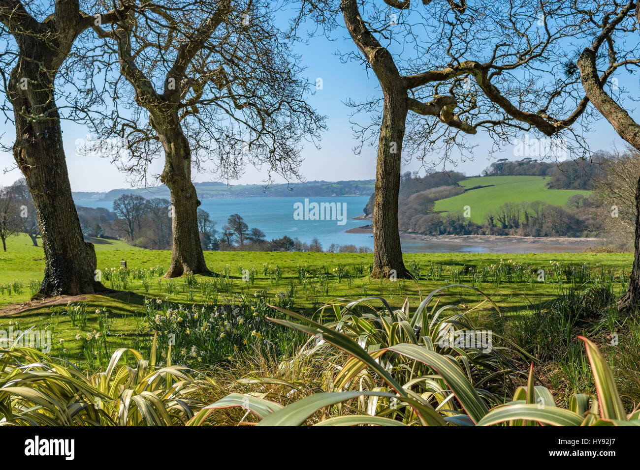 A view over the carrick roads on the river fal in cornwall, england, uk - Stock Image
