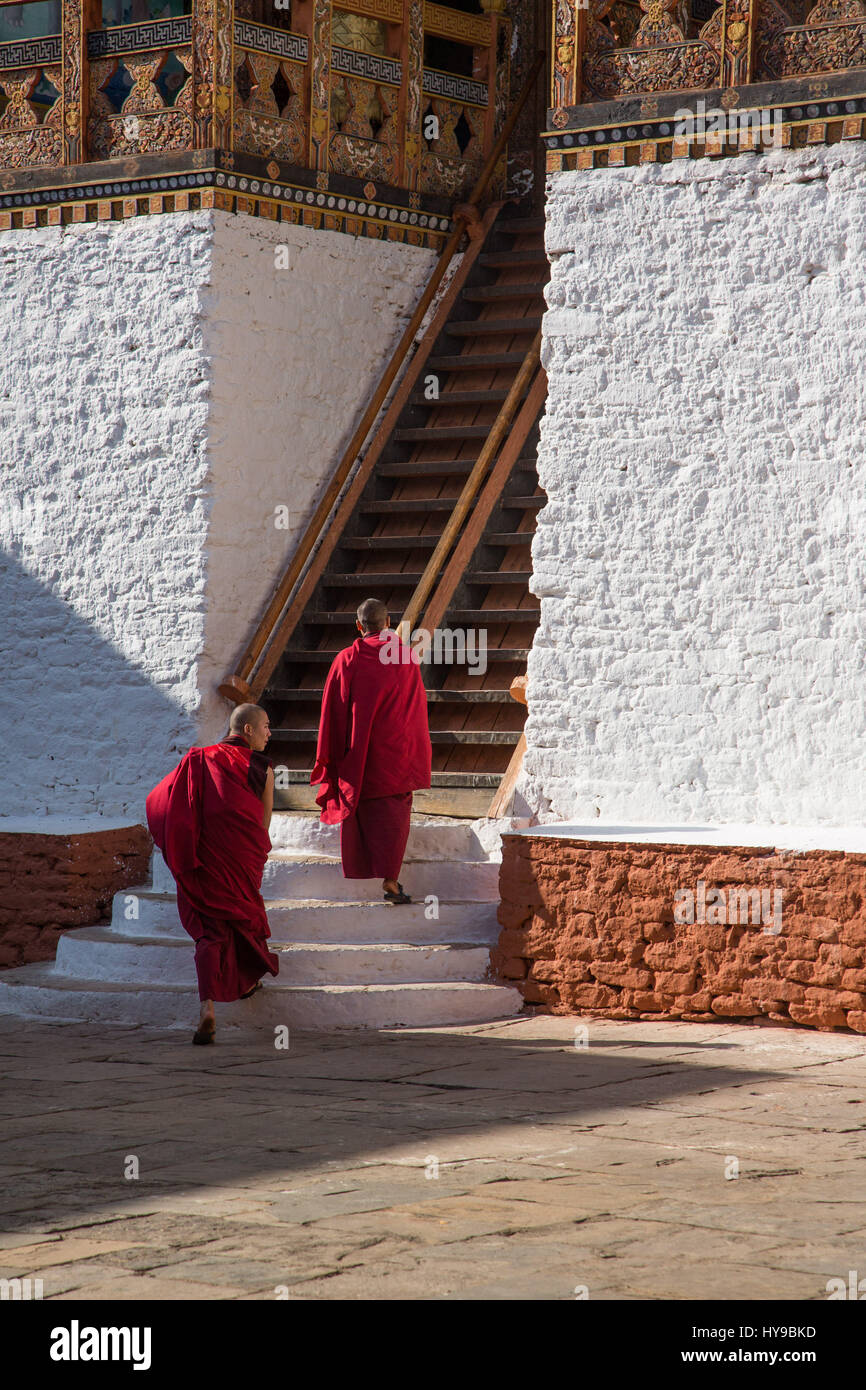 Two monks climb the steep stairs up to the Buddhist temple in the Punakha Dzong, Punakha, Bhutan. - Stock Image