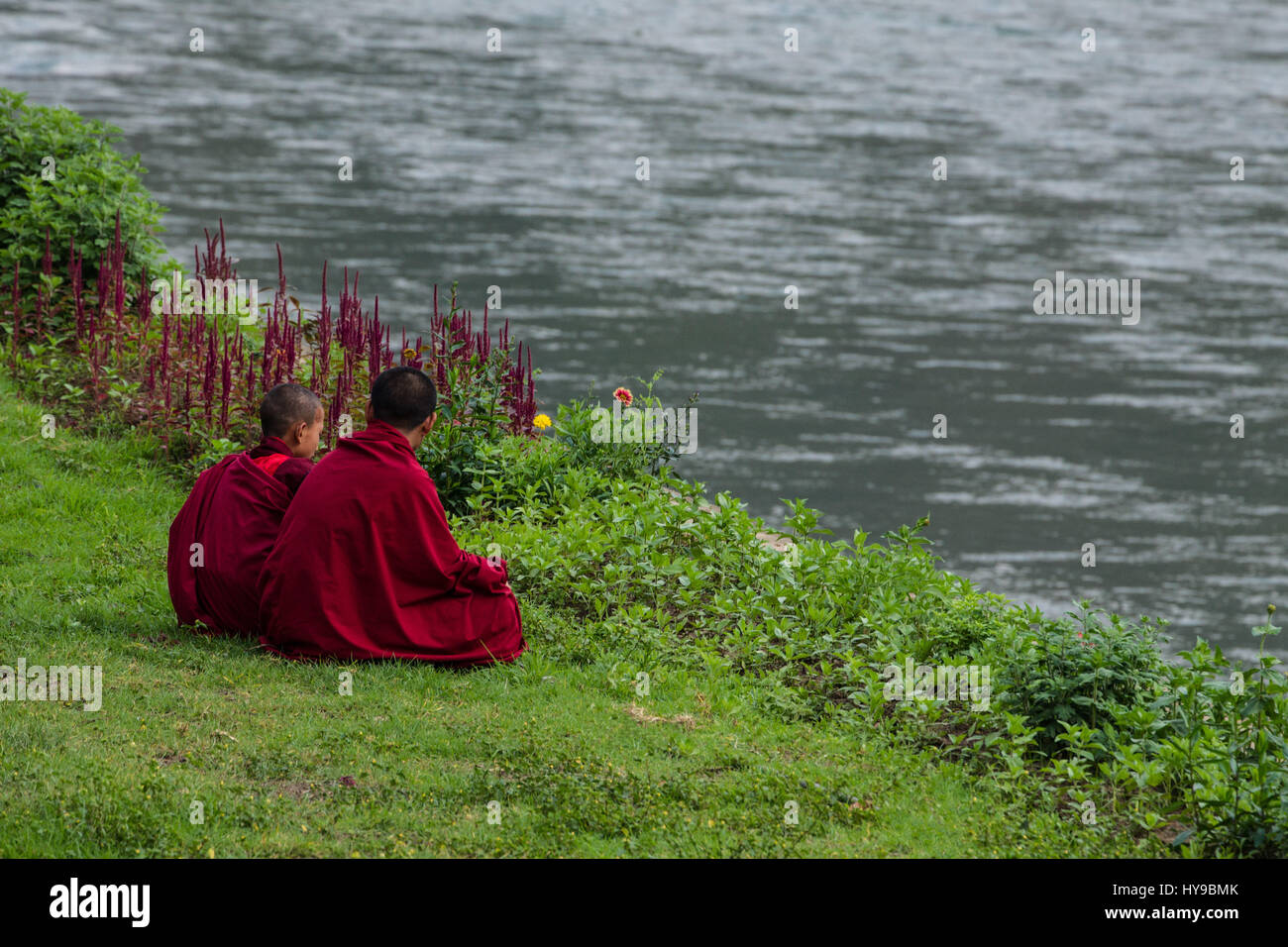 Two young novice Buddhist monks sit in the grass on the bank of the Mo Chhu River at the Punakha Dzong in Punakha, - Stock Image