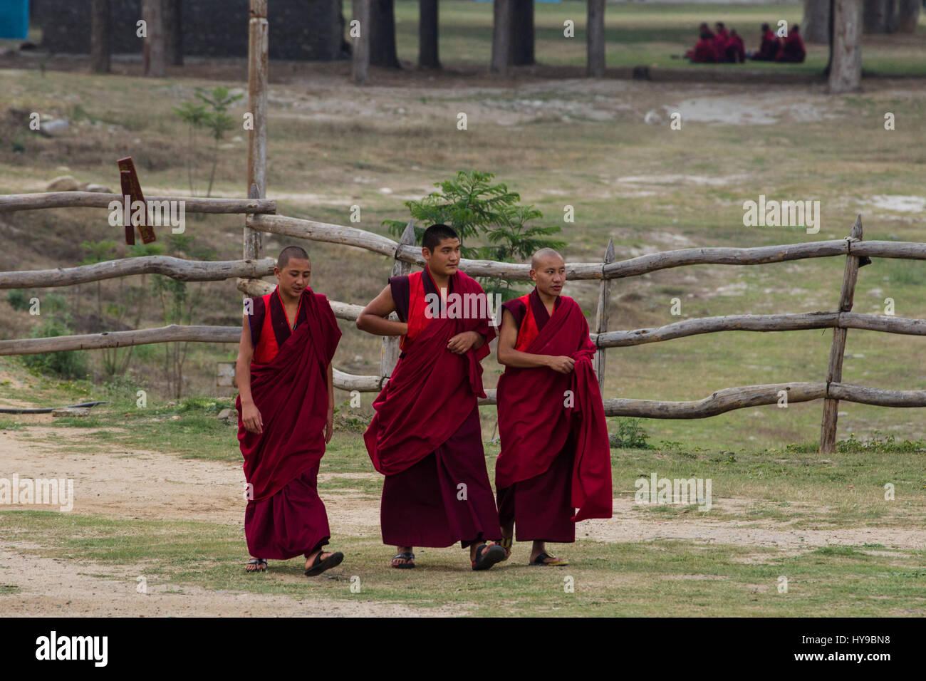 Three Buddhist monks walking to the Punakha Dzong in Punakha, Bhutan. - Stock Image