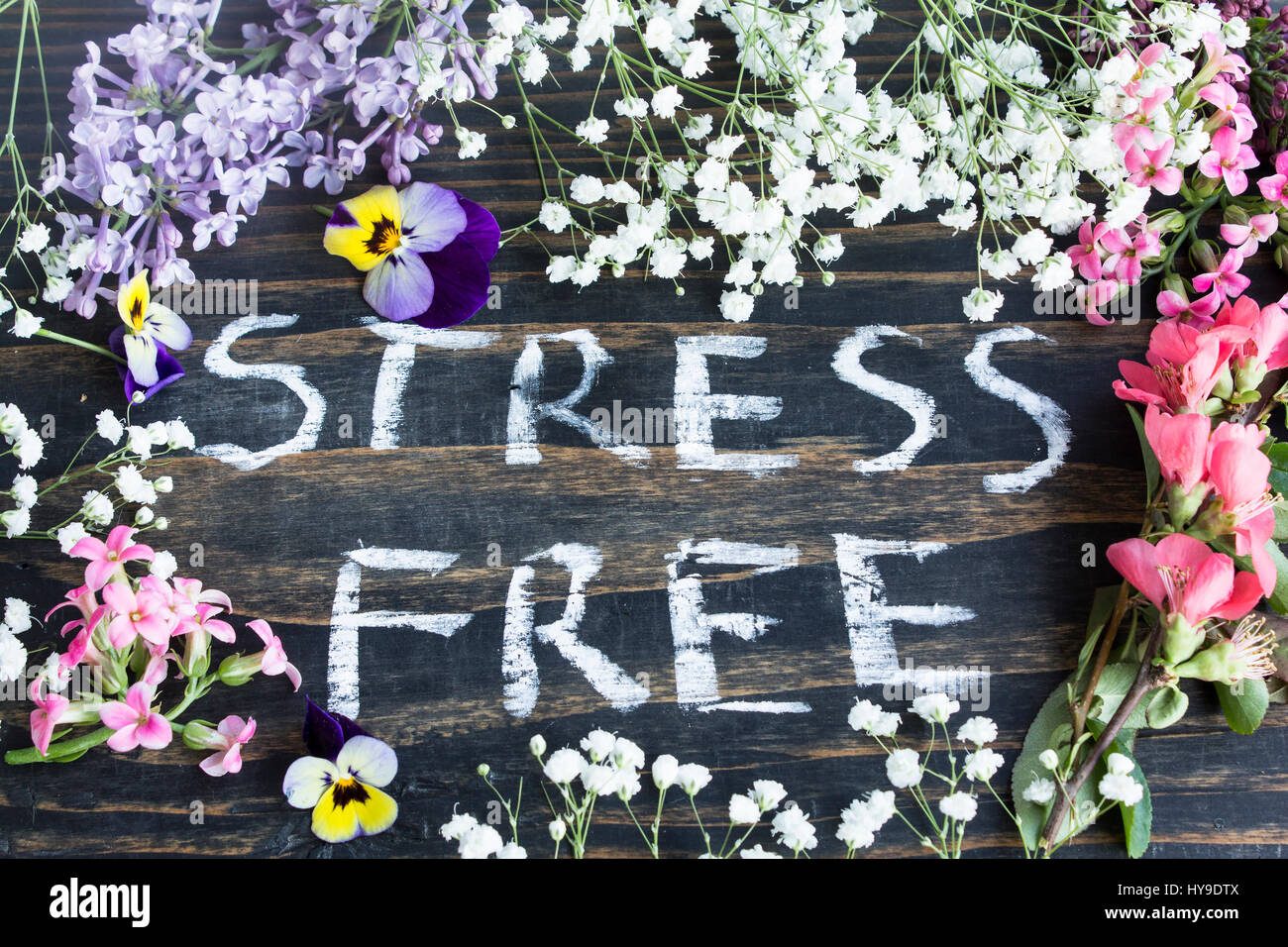 Words Stress Free With Spring Flowers On A Rustic Wooden Background