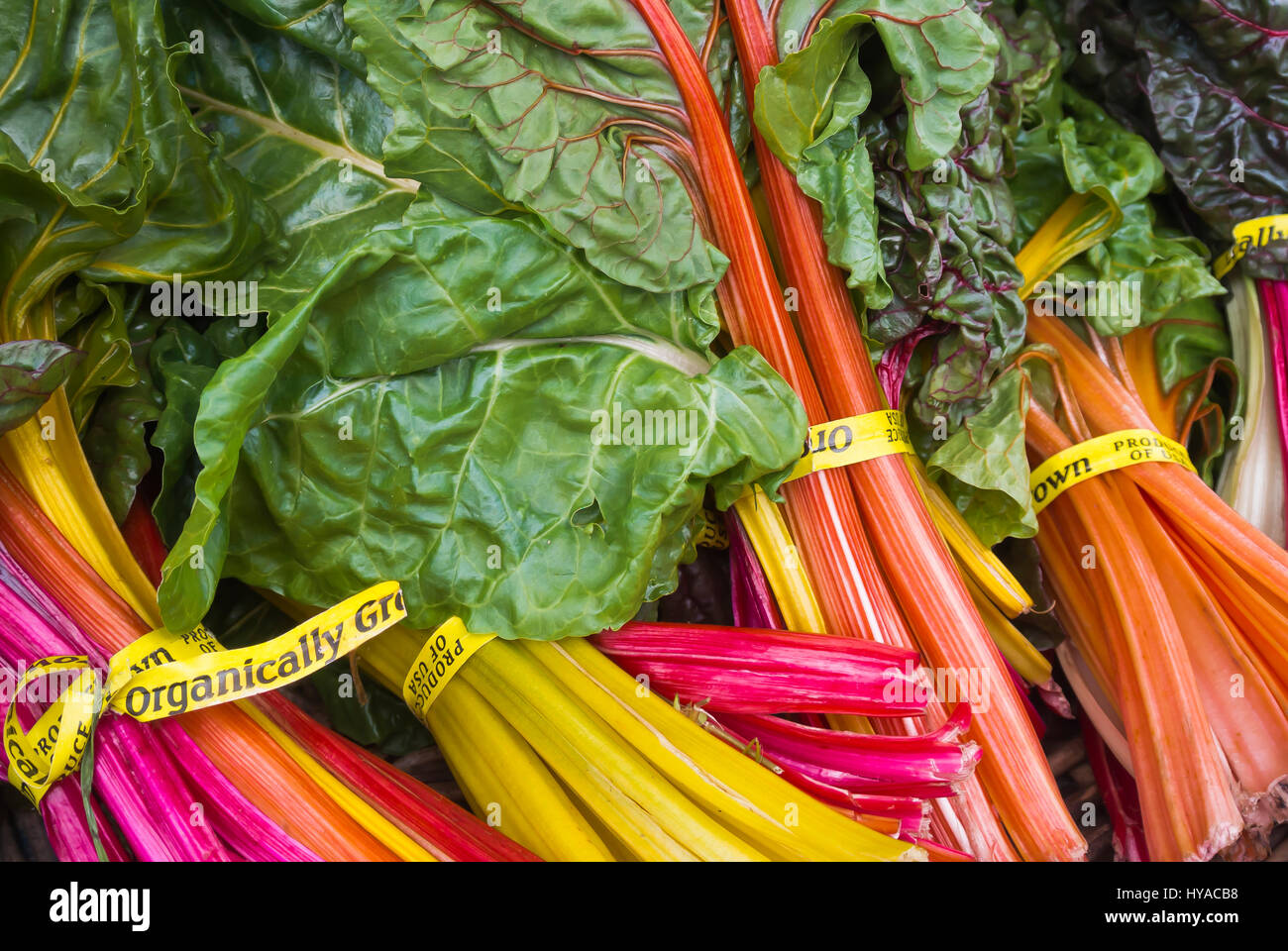 Rainbow Chard On Display For Purchase Stock Photo Alamy
