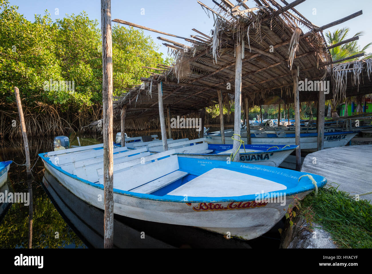 Boats at the docks of the Tovara Natural Reserve in San Blas, Mexico. - Stock Image