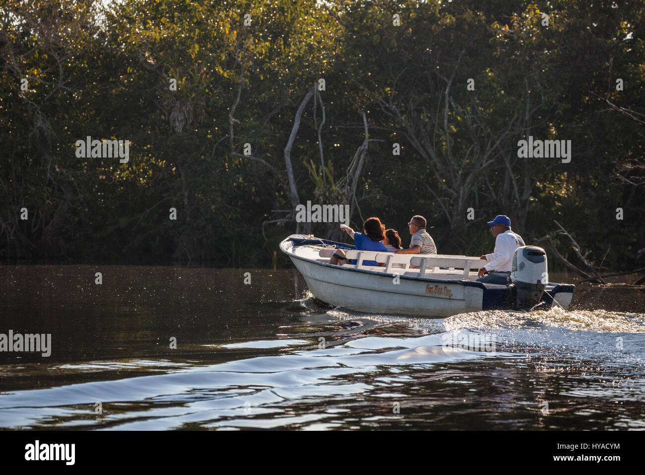 A tour boat sights some wildlife in the Tovara Natural Reserve in San Blas, Mexico. - Stock Image