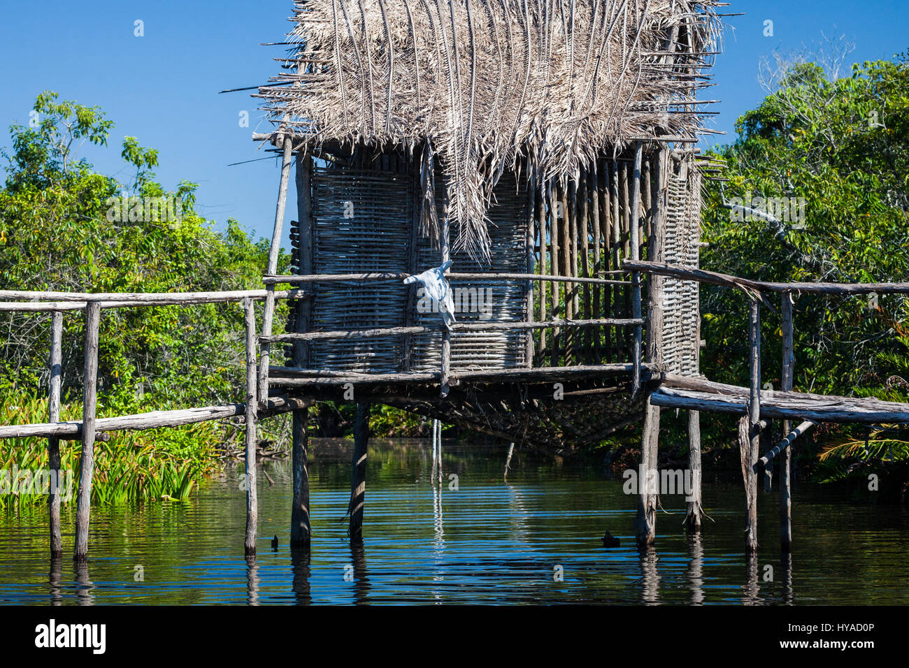 A house on stilts in the tranquil waters of La Tovara Reserve, San Blas, Mexico. - Stock Image