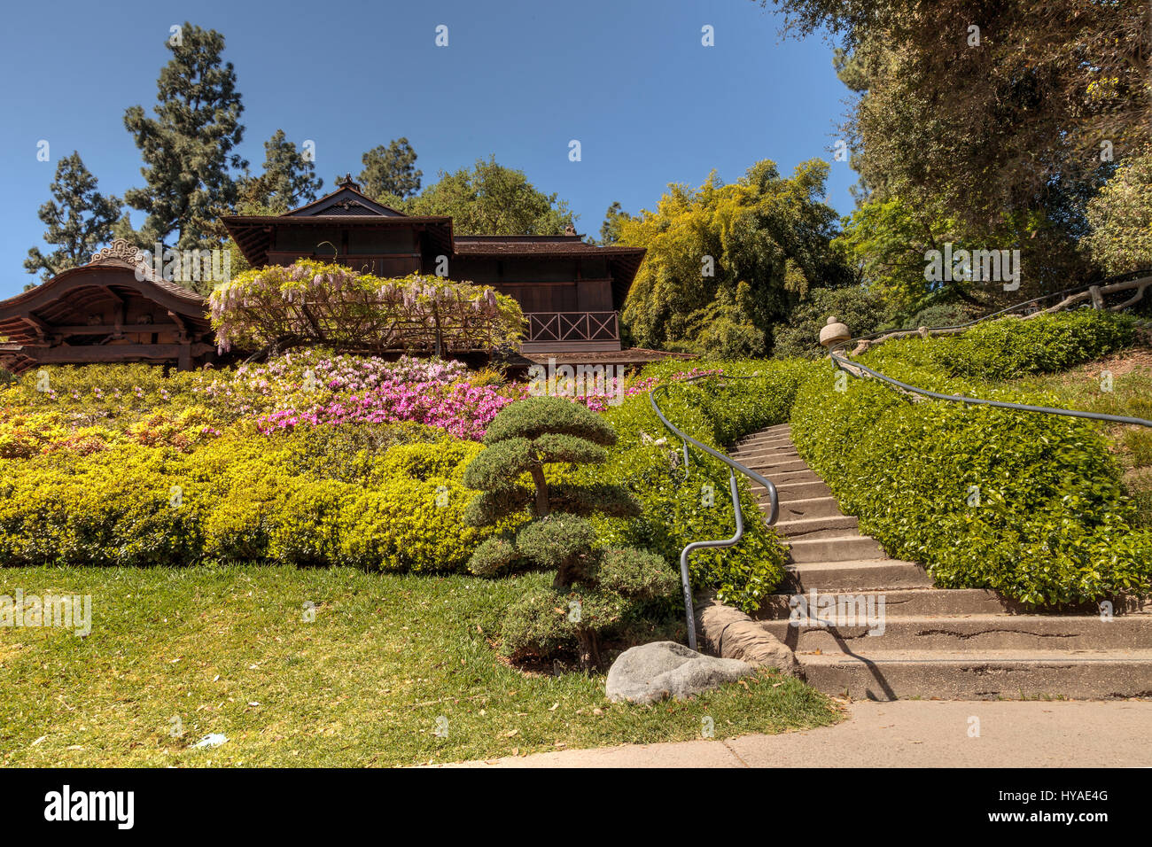 Los Angeles, California, April 1, 2017: Japanese garden at the Stock ...