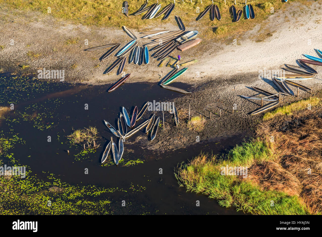 OKAVANGO DELTA, BOTSWANA: BIG GAME animals have been made to look like tiny insects in these awe-inspiring aerial - Stock Image