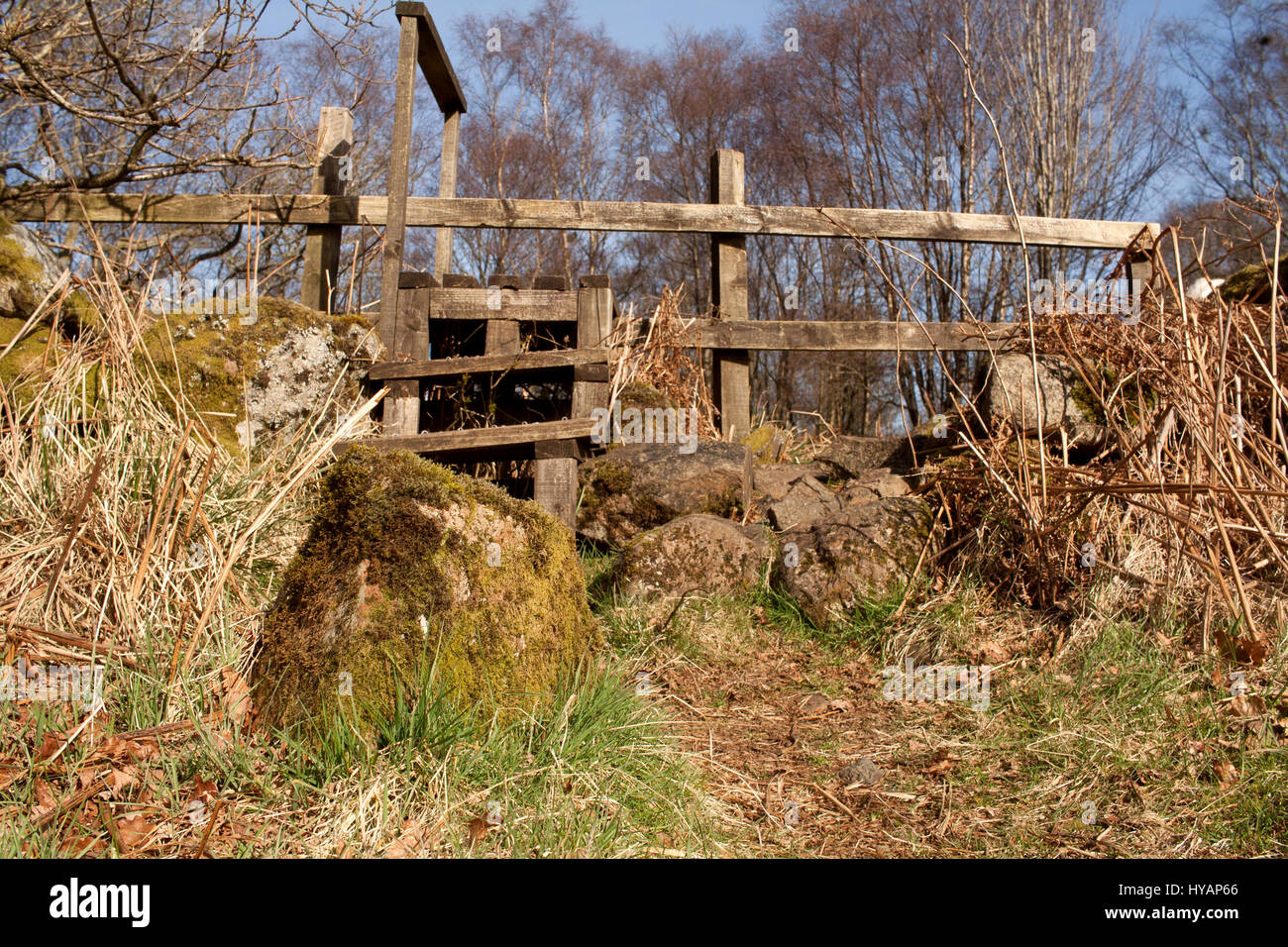 Stile over a drystone wall at Mugdock Country Park, Milngavie, East Dunbartonshire, Scotland Stock Photo